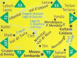 immagine di mappa topografica mappa topografica n.95 - Valle di Non/Nonstal, Passo Mendola/Mendelpass, Parco Naturale Adamello-Brenta, Cles, Val di Sole, Malè, Rabbi, Ultental, Val d'Ultimo, Terlano, Caldaro, Nonsberge, Salorno, Mezzolombardo - compatibile con GPS + mappa panoramica