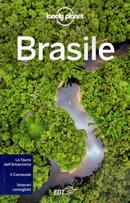 guida Brasile Rio de Janeiro, Sao Paulo, Paranà, Santa Catarina, Grande, Brasilia, Goias, Mato Grosso, Bahia, Salvador, Amazzonia, Cearà, Piauì, Maranhao, Sergipe, Alagoas 2020